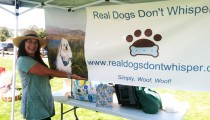 Paw Prints Dog Walk Event 2012
