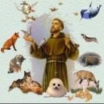 Animal Blessings Radio