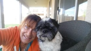 Open Letter To The Parents In Phoenix AZ Who Dumped Their Shih Tzu, Farley has a new home and that is with me.