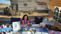 Sun Valley Pet Expo 2015