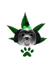 Pet cannabis consulting service educating pet parents and veterinarians for a pet's cannabis treatment.