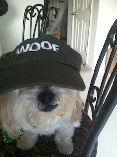 MaGoo wearing Woof hat