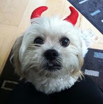 Mr MaGoo with devil horns