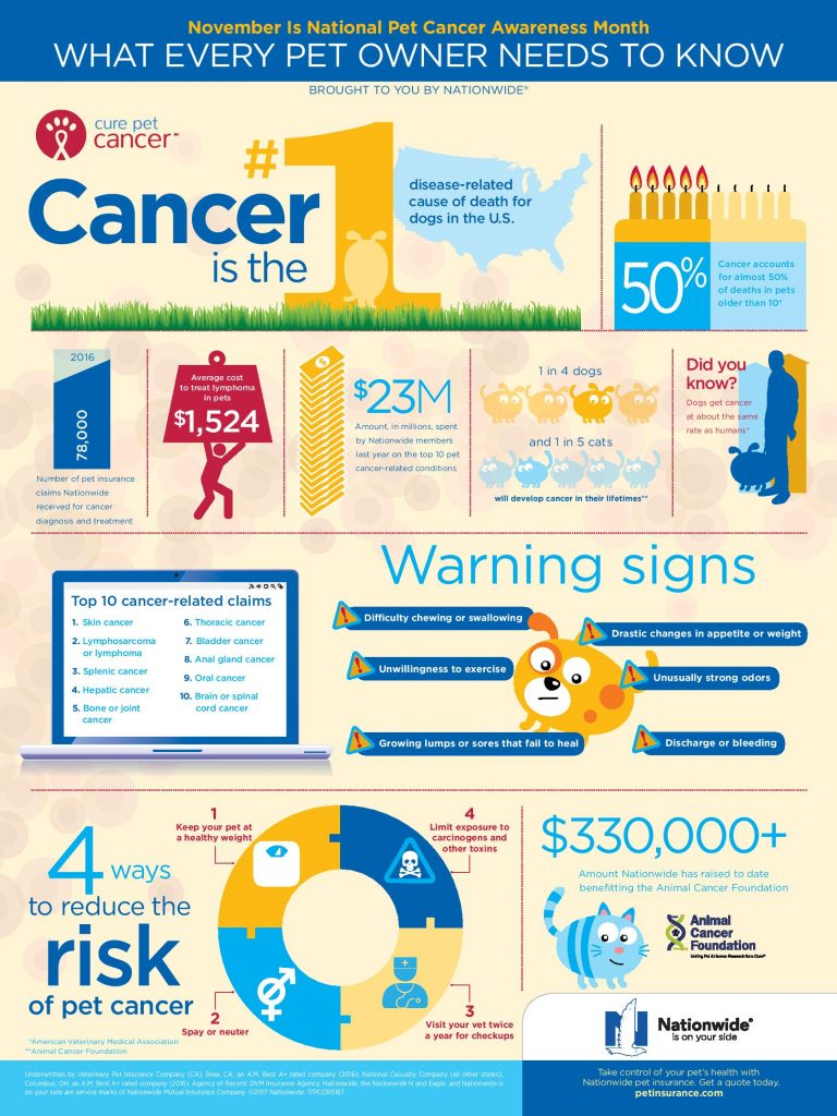 Pet Cancer Awareness Begins With Knowledge